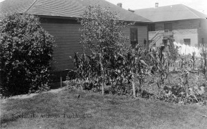 The garden at house number 11 in Ideal. Courtesy Bessemer Historical Society